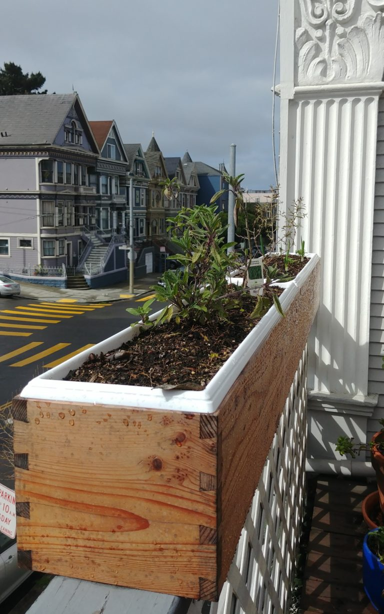 Redwood Planter Boxes, the Sequel